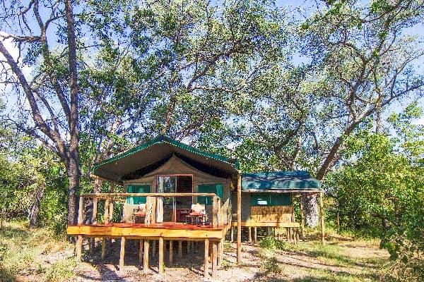 Camp-Moremi-Guest-Tent-Exterior-moremi-botswana