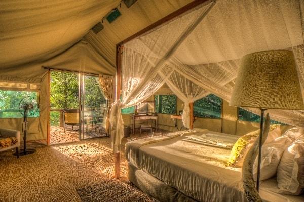 Camp-Moremi-Guest-Tent-Interior-moremi-botswana