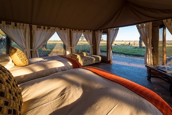 Davisons-camp-interior-hwange-zimbabwe