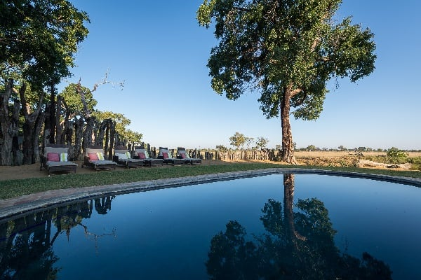 Davisons-camp-pool-hwange-zimbabwe