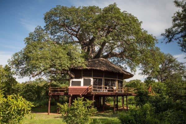 Encounter Africa Tarangire Treetops Tanzania