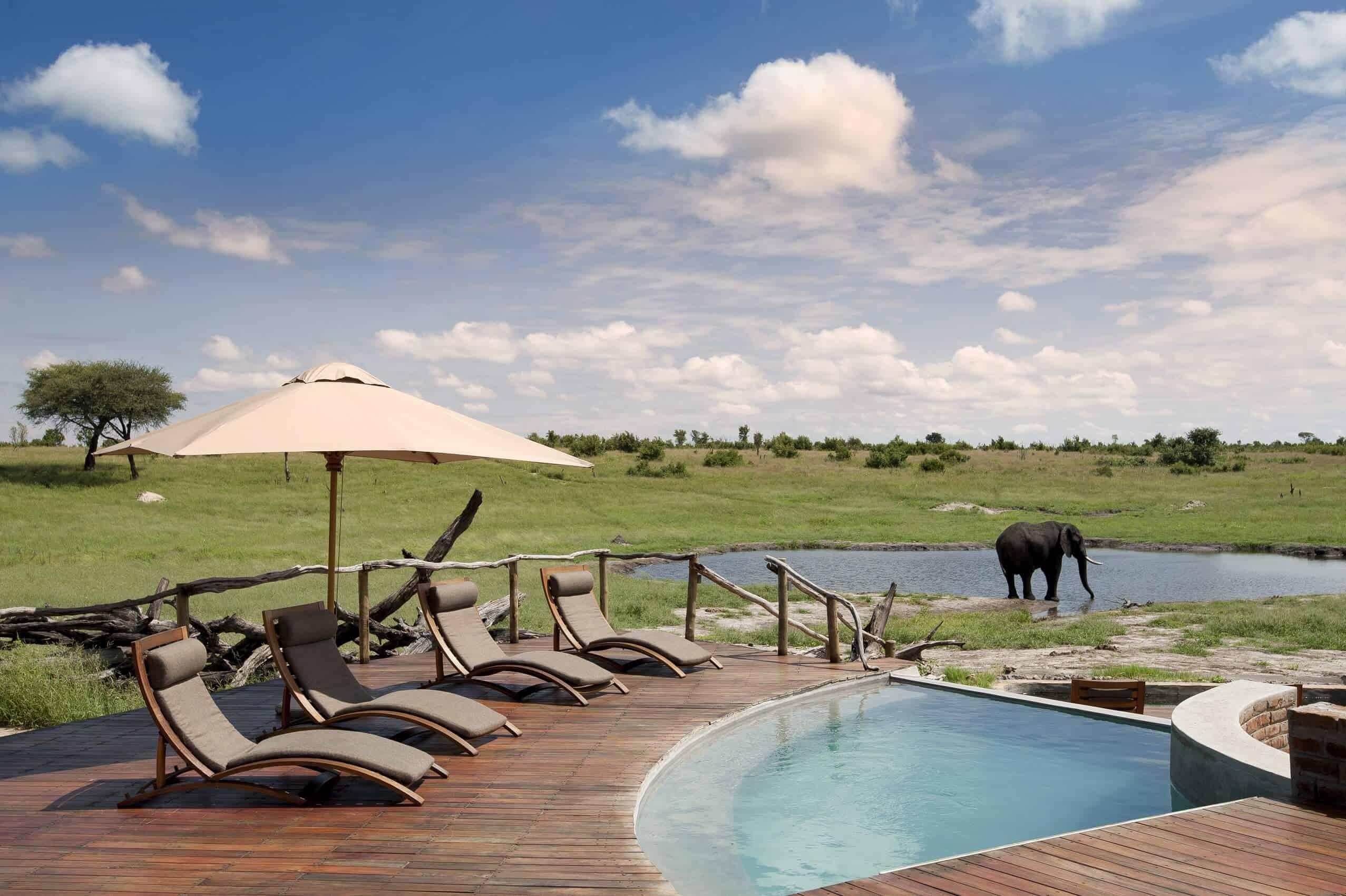 Safaris-somalisa-camp-africa-hwange-zimbabwe