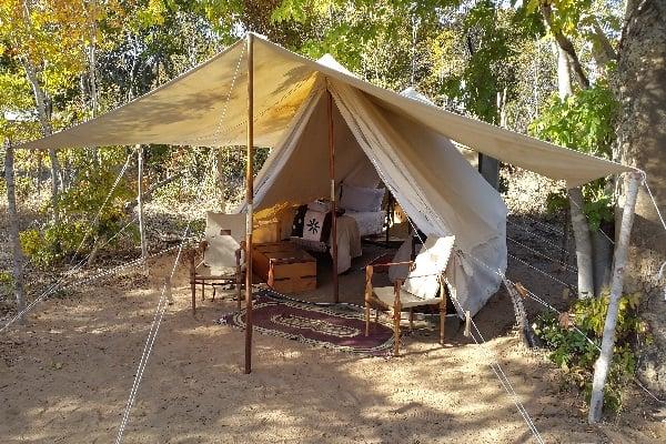 Safaris-vintage-camp-hwange-zimbabwe