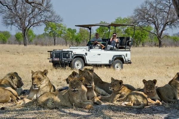 Tailormade-safaris-davisons-camp-hwange-zimbabwe