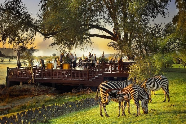 The Sundeck with zebras in the foreground1