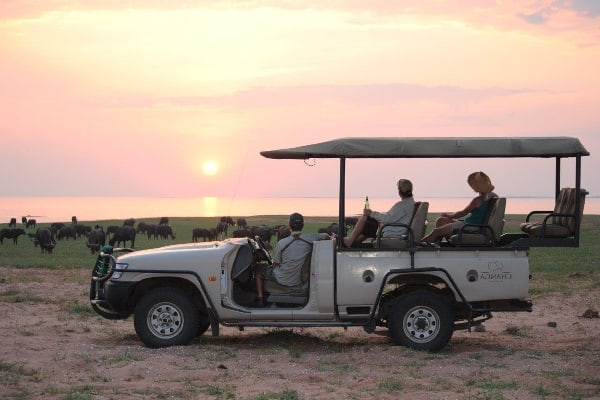changa-safari-camp-game-drives-matusadona-zimbabwe