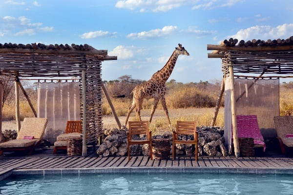 chem-chem-lodge-pool-tarangire-tanzania