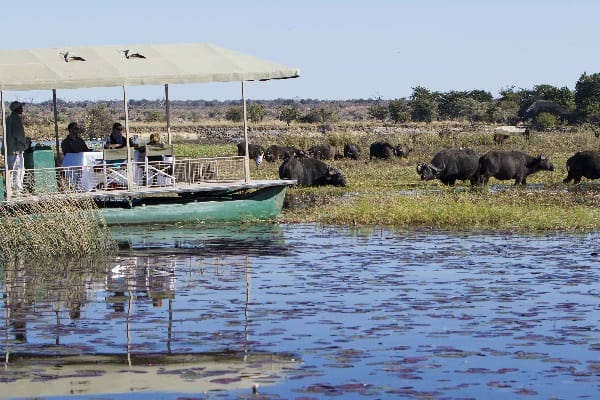 chobe-savanna-lodge-cruise-chobe-botswana