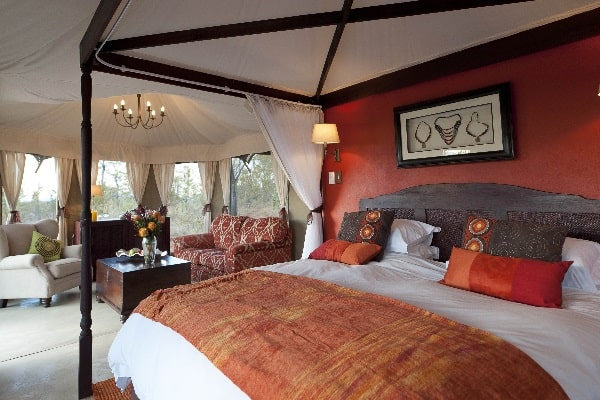 elephant-camp-victoria-falls-zimbabwe