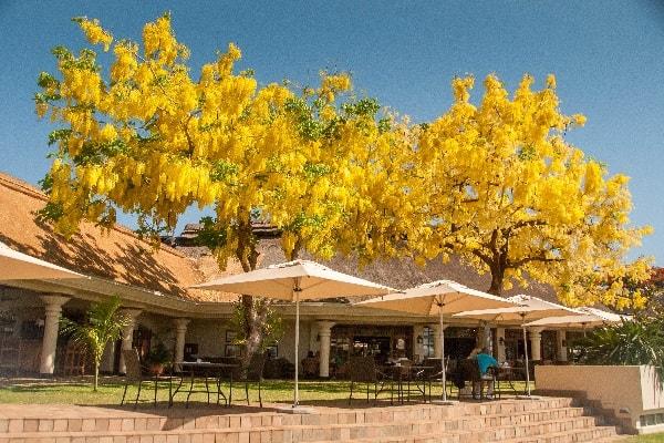 ilala-lodge-exterior-victoria-falls-zimbabwe