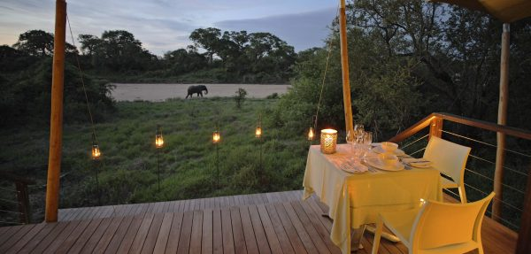 Encounter Africa Ngala Tented Camp Kruger South Africa