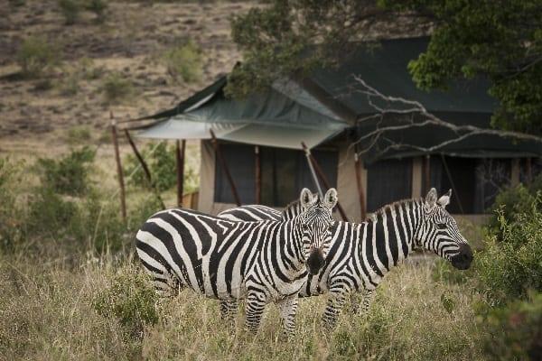 offbeat-mara-camp-view-masai-mara-kenya
