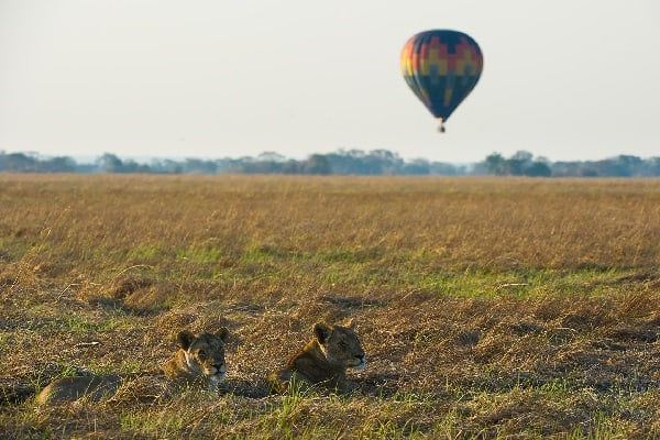 shumba-camp-hot-air-balloons-lower-zambezi-zambia