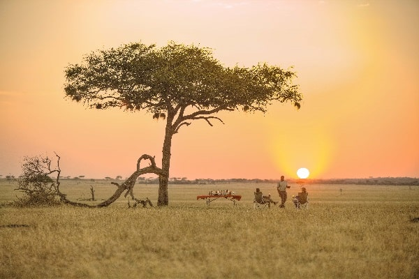 ubuntu-camp-lunch-under-acacia-tree-serengeti-tanzania